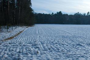 Fotografiar la nieve