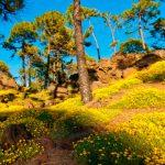 The Mountain: una visión del Teide, por Terje Sorgjerd